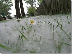 "foto  Фотопост: ""Весенняя"" подборка фотографий. (Flickr.com)"