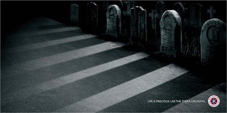 Reckless Driving Zebra Crossing