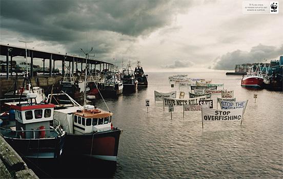 priroda  Фотопост: рекламная кампания WWF (часть 2)