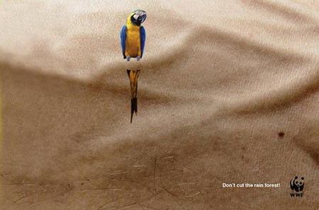 трогательное социальная реклама дизайн
