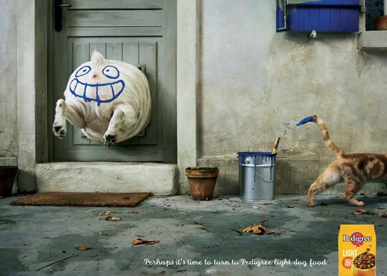 uncategorized  Самая интересная реклама кормов для животных