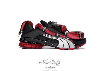 Обувь Пума 01