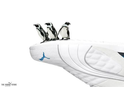 Обувь Пума 11