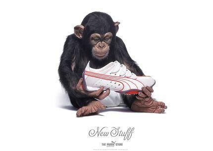 Обувь Пума 16