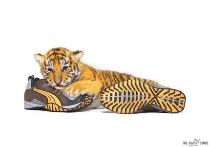 Обувь Пума 07