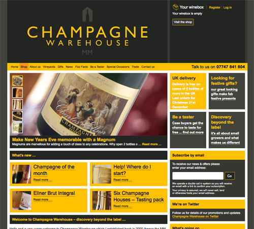 champagnewarehouse 11 Most Popular Blog Design Styles (With Examples)
