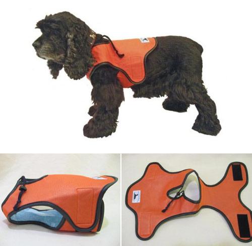 Cool жилет для собак