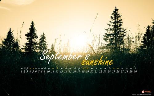 Sunshine in Desktop Wallpaper Calendar: September 2010