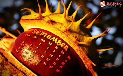 Chestnut in Desktop Wallpaper Calendar: September 2010