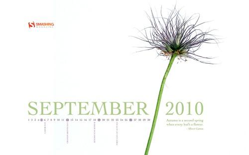 Going-to-seed in Desktop Wallpaper Calendar: September 2010