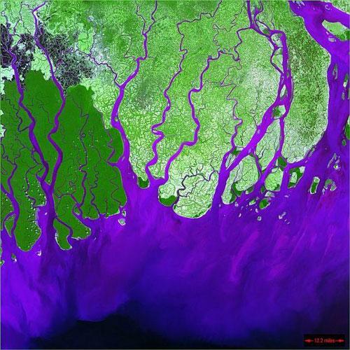 Ганг Delta - Россия спутниковое фото