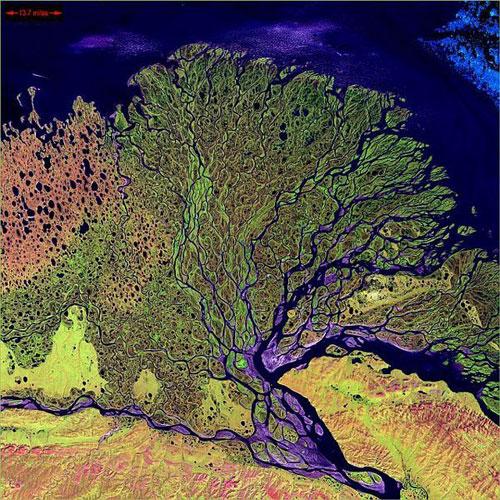 Дельта Лены - Россия спутниковое фото