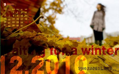 Waiting For A Winter 34 in Desktop Wallpaper Calendar: December 2010