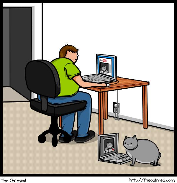 uncategorized  Кот против интернета