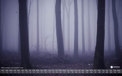 Lost In Winters Fog 40 in Desktop Wallpaper Calendar: January 2011