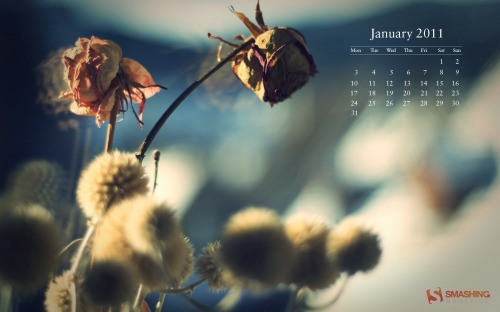 Winter Light 48 in Desktop Wallpaper Calendar: January 2011