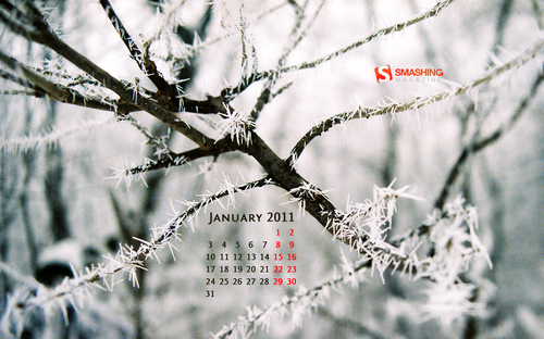 Frozen World 89 in Desktop Wallpaper Calendar: January 2011