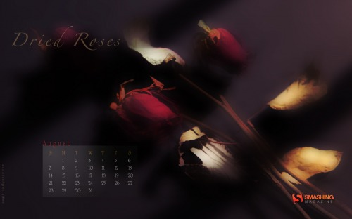 Dried Roses 15 in Desktop Wallpaper Calendar: August 2011