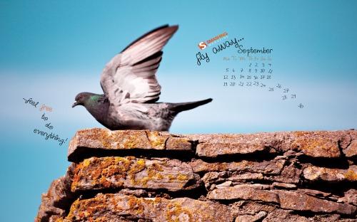 Feel Free 71 in Desktop Wallpaper Calendar: September 2011