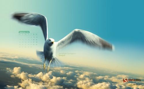 Jonathan Livingston Seagull 94 in Desktop Wallpaper Calendar: September 2011