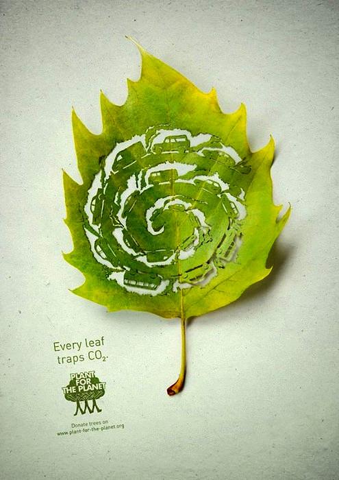 "priroda  Арт проект ""Plant for the Planet"""