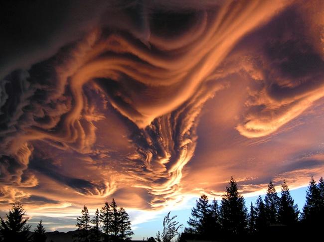 chelovek puteshestviya 2 priroda mir interesnyie faktyi  Оптические иллюзии, созданные природой