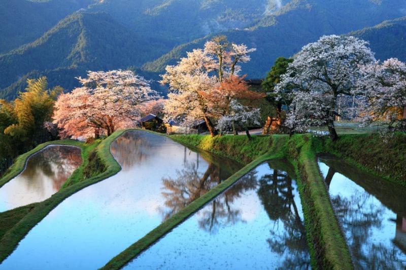 uncategorized  Удивительные места, для которых природа не пожалела красок